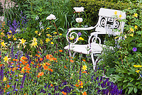 Garden furniture chair in flower bed, Lush garden scene with strong colors, orange, puple, yellow, garden chair, shrubs, peony Paeonia, Aquilgeia columbine, Geum, Salvia, medium view