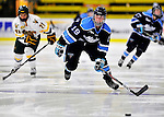 23 November 2011: University of Maine Black Bears' forward Brittany Dougherty, a Junior from Chesterfield, MI, in action against the University of Vermont Catamounts at Gutterson Fieldhouse in Burlington, Vermont. The Lady Bears defeated the Lady Cats 5-2 in Hockey East play. Mandatory Credit: Ed Wolfstein Photo
