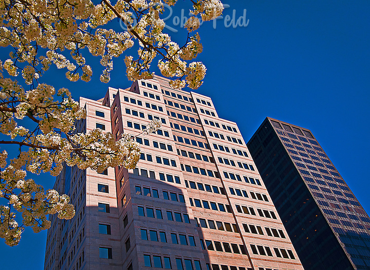 Premier Health Building, Main St. Dayton, Ohio, Kettering Tower, buildings, Downtown Dayton, Up Series