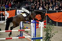 ZUIDBROEK - Paardensport, ICCH Zuidbroek, springen internationaal Grote Prijs , 05-01-2019, Julian de Boer met Everton
