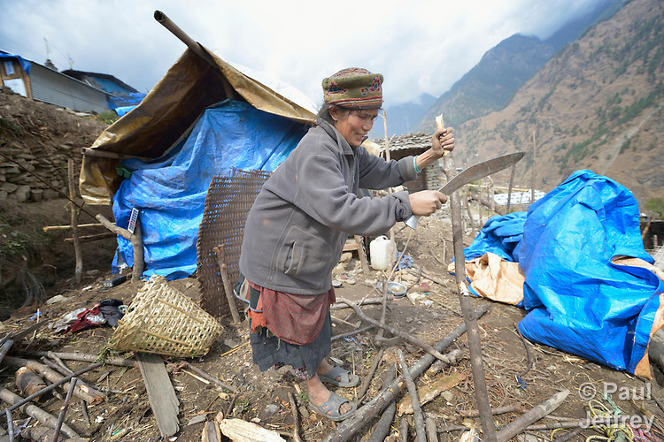A Tamang woman cuts branches to make a temporary shelter in the village of Gatlang, in the Rasuwa District of Nepal near the country's border with Tibet.<br /> <br /> In the aftermath of the April 2015 earthquake that ravaged Nepal, the ACT Alliance helped people in this village with a variety of services, including blankets, shelter and livelihood assistance.