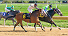 Chattolanee winning at Delaware Park on 10/12/16