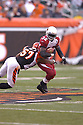 EDGERRIN JAMES, of the Arizona Cardinals, in action during their game against the Cincinnati Bengals on November 18, 2007 in Cincinnati, Ohio...Cardinals win 35-27..SportPics