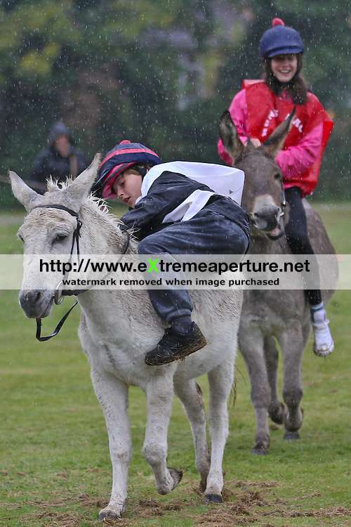 THEYDON BOIS, ESSEX, ENGLAND - SEPTEMBER 2012: 25th  Theydon Bois Scout Group Donkey Derby 2012.  Child falls off a donkey during the 25th annual Theydon Bois Donkey Derby at Theydon Bois Village Green, Essex on September 23, 2012 in Epping, England. (Photo by Dave Horn - Extreme Aperture Photography)