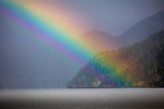 Olympic Peninsula, Washington , rainbow