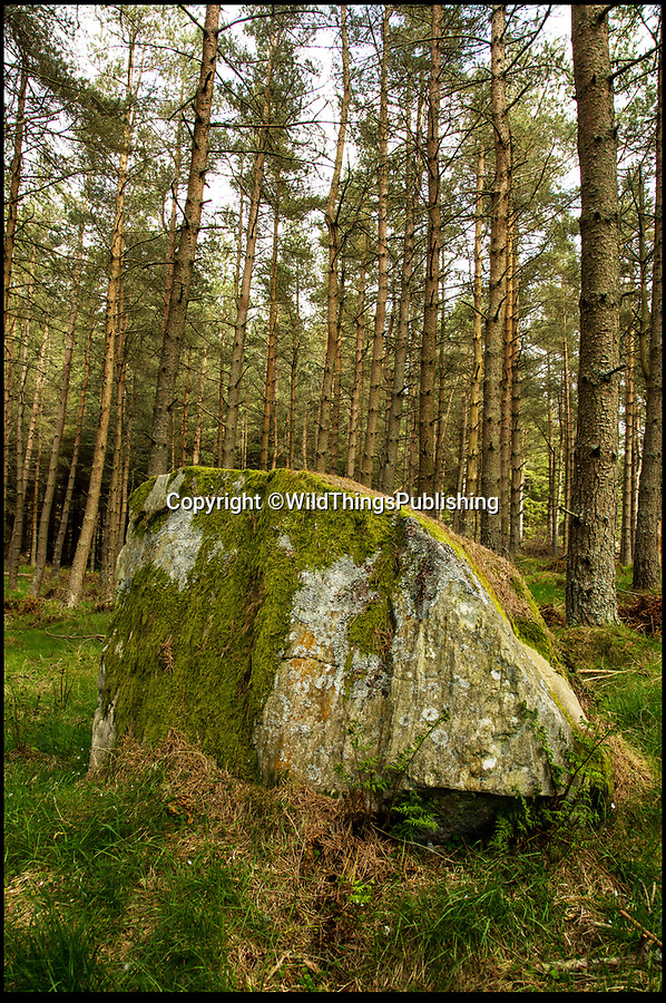BNPS.co.uk (01202 558833)<br /> Pic: WildThings/BNPS<br /> <br /> Sma Glen Cairn in Scotland.<br /> <br /> Walk back in Time - new travel book reveals Britain's ancient places.<br /> <br /> An explorer has travelled the length and breadth of Britain to document over 400 mysterious little known ancient sites.<br /> <br /> Dave Hamilton ventured off the beaten track to uncover wild ruins which have stood for between 2,000 and 10,000 years.<br /> <br /> He avoided famous sites like Stonehenge, instead focusing on little-known lost ruins scattered across the country.<br /> <br /> His travels saw him encounter sacred tombs and caves, stone circles, Bronze Age brochs and Iron Age hillforts.