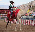 Kristy Bond competes on media day at the International Camel Races in Virginia City, Nev., on Friday afternoon, Sept. 7, 2012. The 53rd annual event continues Saturday at 1 p.m. and at noon on Sunday..Photo by Cathleen Allison