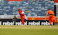 1st November 2019; Western Australia Cricket Association Ground, Perth, Western Australia, Australia; Womens Big Bash League Cricket, Perth Scorchers versus Melbourne Renegades; Danielle Wyatt of the Melbourne Renegades comes down the pitch and miss times a shot against Taneale Peschel of the Perth Scorchers