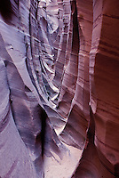 Narrow striated sandstone canyon walls in Zebra Slot Canyon, near Escalante, Utah, October 2007