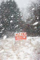 A campaign for Republican presidential candidate Carly Fiorina stands near the road during a snowstorm near Derry, New Hampshire.