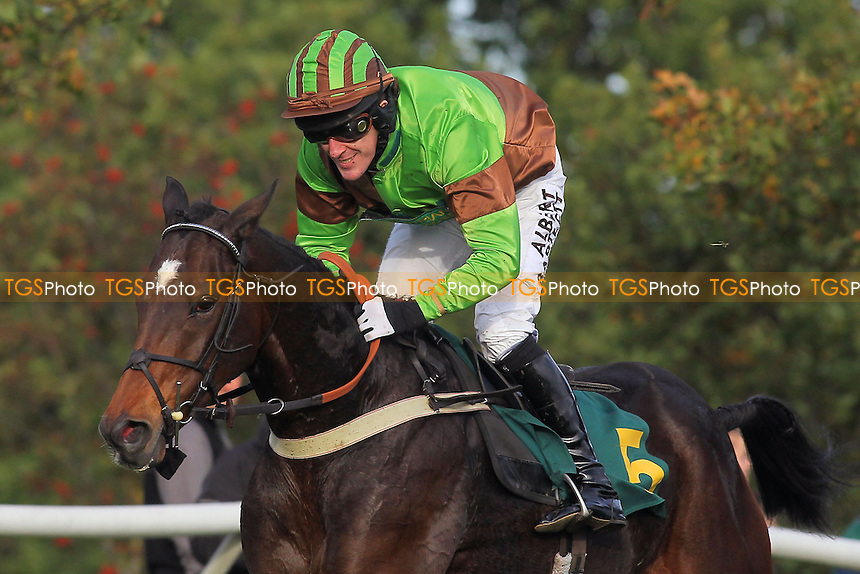 Victor Leudorum ridden by A P McCoy in jumping action during the October Handicap Chase - National Hunt Horse Racing at Fakenham Racecourse, Norfolk - 25/10/13 - MANDATORY CREDIT: Gavin Ellis/TGSPHOTO - Self billing applies where appropriate - 0845 094 6026 - contact@tgsphoto.co.uk - NO UNPAID USE