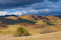 Siskiyou County, CA<br /> Little Shasta Valley in afternoon light