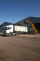 Loading a grain lorry<br /> &copy;Tim Scrivener Photographer 07850 303986<br />      ....Covering Agriculture In The UK....