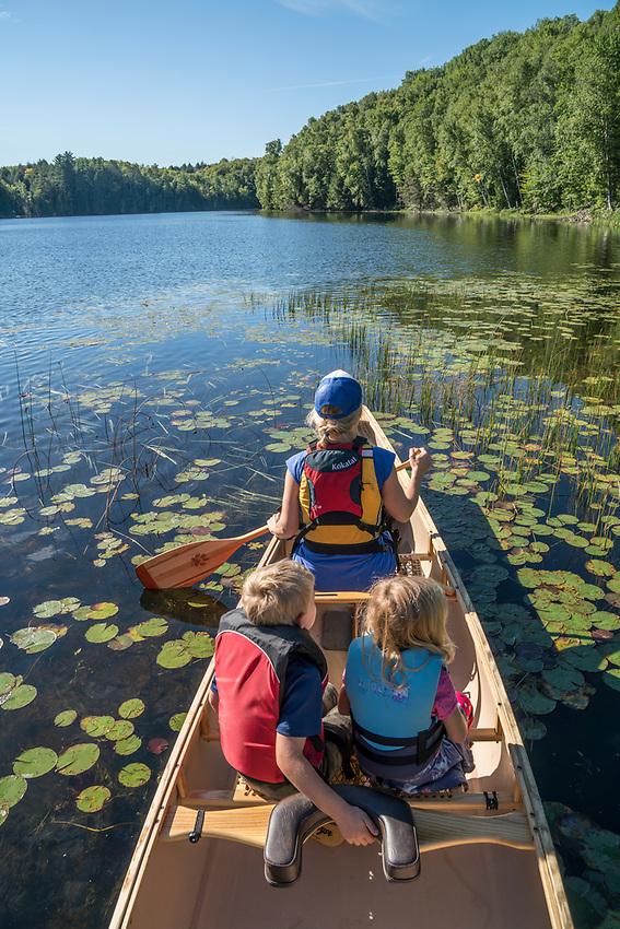 Paddling a red canoe among lily pads, Michigan's Upper Peninsula.