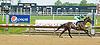 Whiskey Tap winning at Delaware Park on 5/16/12
