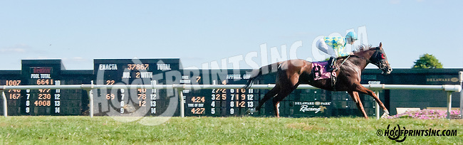 Guilio's Jewel winning at Delaware Park on 9/23/13