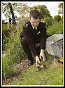 14/05/2002                   Collect Pic : James Stewart.File Name : stewart-ducklings 06.SSPCA FIFIE INSPECTOR STEVEN GRAY RELEASES THE MOTHER DUCK AND DUCKLINGS FOUND ON THE ROOF TOP GARDEN IN ST.ANDREWS INTO THE KINESS BURN.......(see copy from George Mair / Tim Bugler).......Payments to :-.James Stewart Photo Agency, 19 Carronlea Drive, Falkirk. FK2 8DN      Vat Reg No. 607 6932 25.Office     : +44 (0)1324 570906     .Mobile  : +44 (0)7721 416997.Fax         :  +44 (0)1324 570906.E-mail  :  jim@jspa.co.uk.If you require further information then contact Jim Stewart on any of the numbers above.........