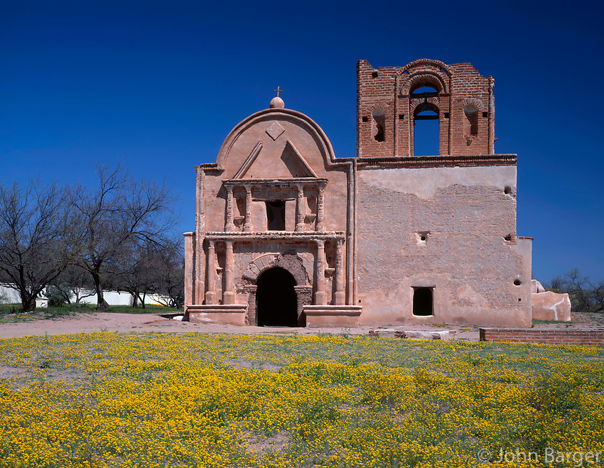 AZBD_02 - Remains of mission church San Jose de Tumacacori originally built in early 1800's and spring wildflowers, Tumacacori National Historical Park, southern Arizona, USA --- (4x5 inch original, File size: 7747x6000, 133.4mb uncompressed) .