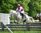 Won Wild Bird, who trailed throughout most of the race, bides his time in the Radnor Hunt Cup before unleashing a powerful stretch drive.