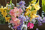A bouquet of Daisies and Gladiolas