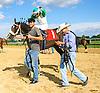 Yo Soy El Lobo winning at Delaware Park on 9/2/16