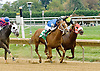 Grand Sensation winning at Delaware Park on 9/29/12