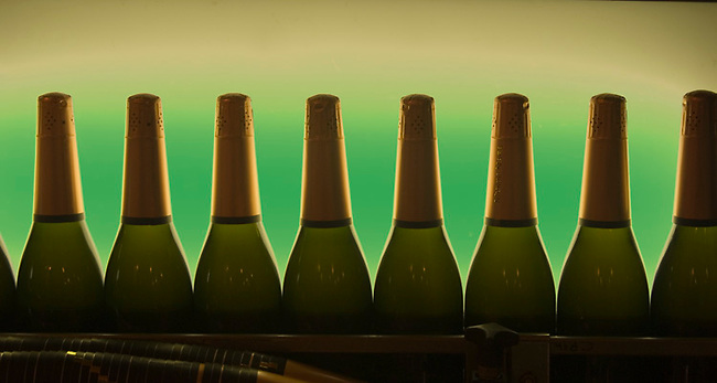 Bottles of sparkling wine