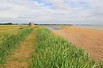 Coastal landforms shingle beach lagoon and bay bar, view north to Shingle Street, Bawdsey, Suffolk, England, UK
