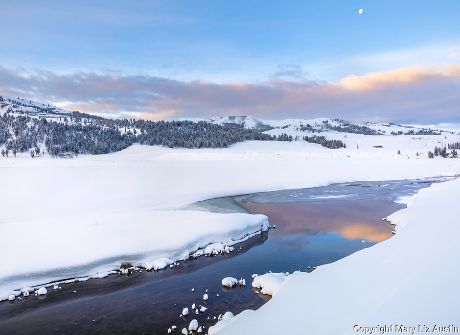 Yellowstone National Park, Wyoming: Sunrise clouds reflected in the Lamar River in the Lamar Valley with moonset