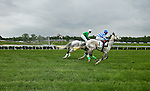 Photos from the Queens Cup Steeplechase event held in Mineral springs, just outside of Charlotte NC.