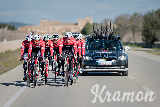 sprint lead-out training at the Team Trek-Segafredo winter training camp <br /> <br /> january 2017, Mallorca/Spain