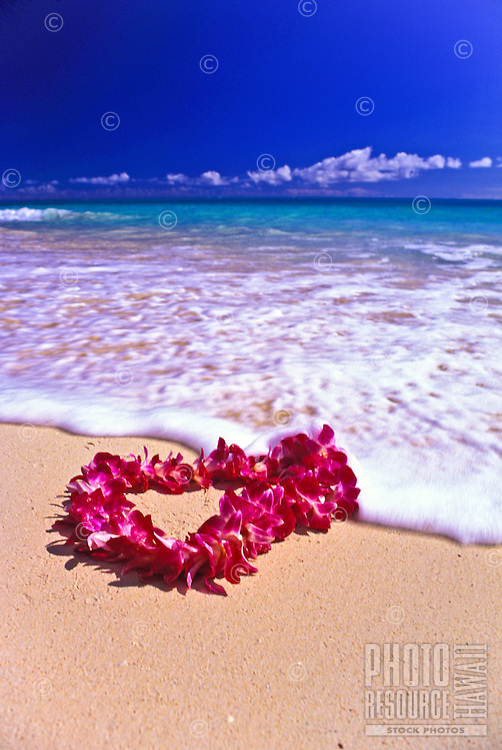 A beautiful orchid lei gently settles on the warm sands of an Hawaiian beach.