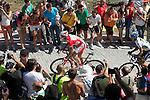 Joaquin Purito Rodriguez and Alberto Contador during the stage of La Vuelta 2012 between Vilagarcia de Arousa and Mirador de Erazo (Dumbria).August 30,2012. (ALTERPHOTOS/Paola Otero)