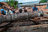 Colombian workers roll a log from the Pacific rainforest at a sawmill in Tumaco, Colombia, 18 June 2010. Tens of sawmills located on the banks of the Pacific jungle rivers generate almost half of the Colombia's wood production. The wood species processed here (sajo, machare, roble, guabo, cargadero y pacora) are mostly used in the construction industry and the paper production. Although the Pacific lush rainforest in Colombia is one of the most biodiverse area of the world, the region suffers an extensive deforestation due to the uncontrolled logging in the last years.