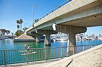 """Dana Point Harbor """"Mike"""" Kirwan Bridge"""