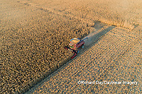 63801-12319 Harvesting corn in fall-aerial  Marion Co. IL