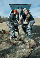 Hunting white tail deer with Jake Jacobs (cq), Richard Watkins (cq), a guide with Trophies Plus Outfitters and John Taranto, a writer with Outdoor Life Magazine at Trope Ranch near Hullett, Wyoming, Thursday, November 8, 2012.<br /> <br /> <br /> Photo by Matt Nager