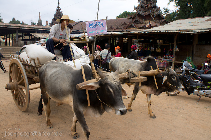traditional carriage in village  Inthein close to  Inle Lake, Shan state,  Myanmar, 2011