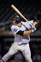 Tampa Tarpons catcher Kellin Deglan (25) at bat during the second game of a doubleheader against the Lakeland Flying Tigers on May 31, 2018 at George M. Steinbrenner Field in Tampa, Florida.  Lakeland defeated Tampa 3-2.  (Mike Janes/Four Seam Images)