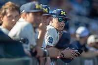 Michigan Wolverines pitcher Blake Beers (29) in the dugout before playing against the Vanderbilt Commodores during Game 1 of the NCAA College World Series Finals on June 24, 2019 at TD Ameritrade Park in Omaha, Nebraska. Michigan defeated Vanderbilt 7-4. (Andrew Woolley/Four Seam Images)
