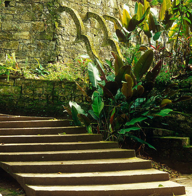 Steps wind their way around the garden where an old stone wall is supported by a row of concrete buttresses