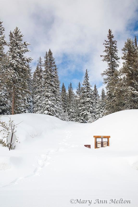 Colorado HWY 50  Gunnison  Salida Monarch Pass