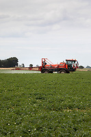 21.7.2020 Blight spraying in the Lincolnshire Fens <br />  ©Tim Scrivener Photographer 07850 303986<br />      ....Covering Agriculture In The UK.