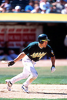 OAKLAND, CA - Johnny Damon of the Oakland Athletics bats during a game at the Oakland Coliseum in Oakland, California in 2001. Photo by Brad Mangin