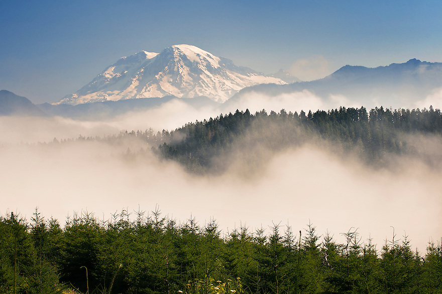 Fog lifts over from the forest below Mount St. Helens in Washington.