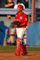 August 6, 2009:  Catcher Ivan Castro of the Batavia Muckdogs during a game at Dwyer Stadium in Batavia, NY.  The Muckdogs are the Short-Season Class-A affiliate of the St. Louis Cardinals.  Photo By Mike Janes/Four Seam Images