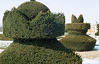 Topiary clipped in the shape of chess pieces