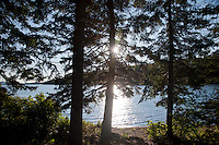 The sun breaks through trees along a protected bay of Isle Royale National Park in Michigan USA.