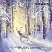 Marcello, CHRISTMAS LANDSCAPES, WEIHNACHTEN WINTERLANDSCHAFTEN, NAVIDAD PAISAJES DE INVIERNO, paintings+++++,ITMCXM1834,#XL#,deer