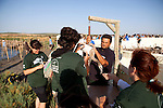 Vets, biologists and volunteers helping to weigh juvenile Flamingo chicks at the annual leg ringing event in Fuente de Piedra, Andalucia, Spain